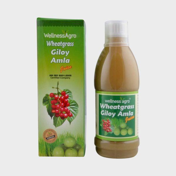 Wellness Agro Wheat Grass Giloy Amla