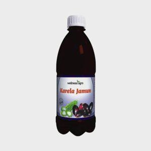 Wellness Agro Karela Jamun Juice 1000ml