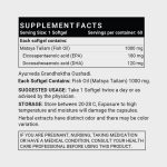 INLIFE Fish Oil Omega 3 Supplement_1
